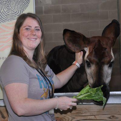 Feeding an okapi on the Sense of Africa Tour at Disney's Animal Kingdom Lodge