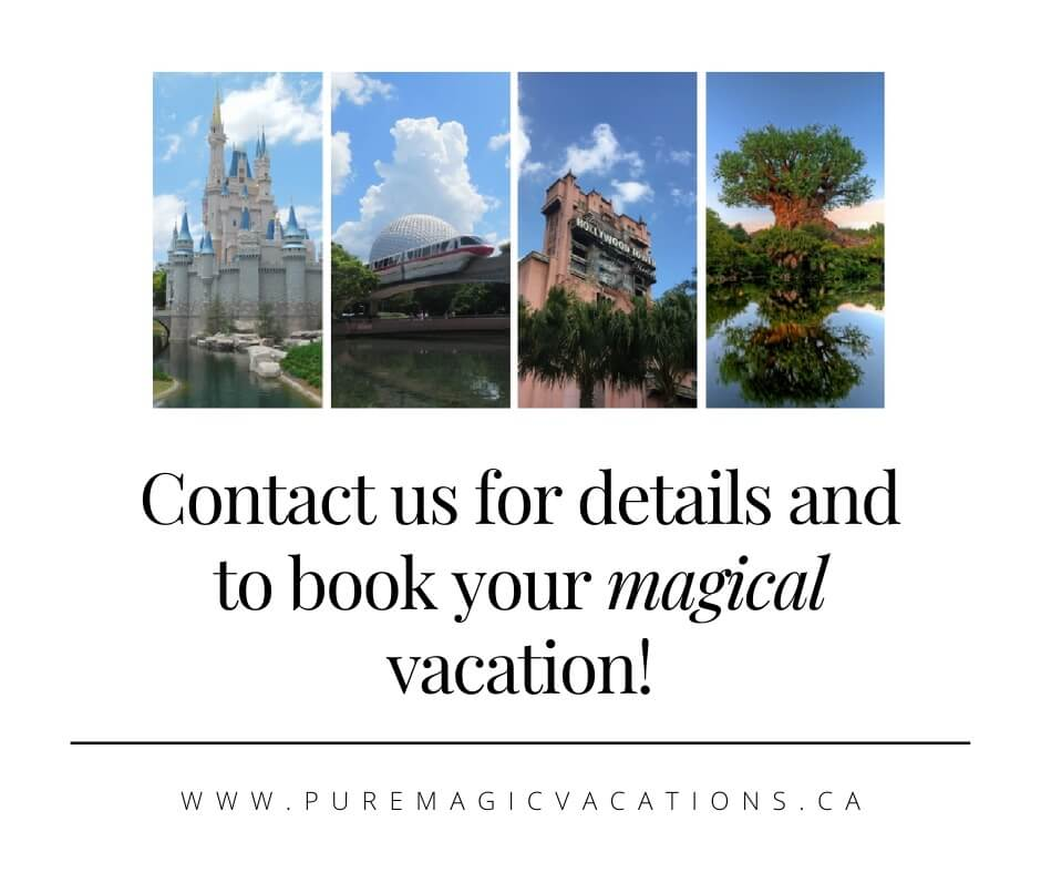 Contact Pure Magic Vacations